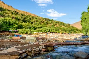 Day trip to Ourika Valley & High Atlas